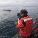 Documenting Seismic testing Barents Sea