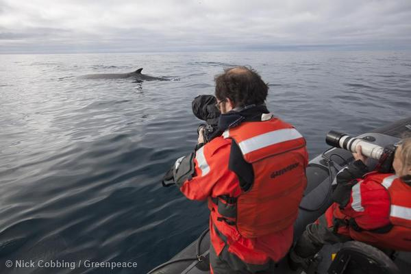 Documenting Seismic testing Barents Sea