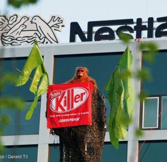 Forest Action at Nestlé HQ in AmsterdamBossenactie voor het hoofdkantoor van Nestlé in Amsterdam