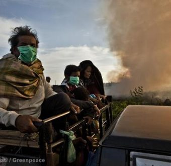 Villagers Evacuate During Forest Fires in Sumatra