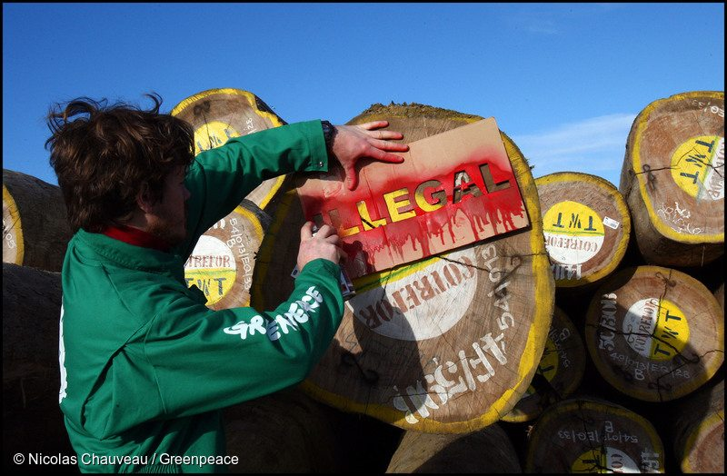 Protest against Suspected Illegal Timber in France