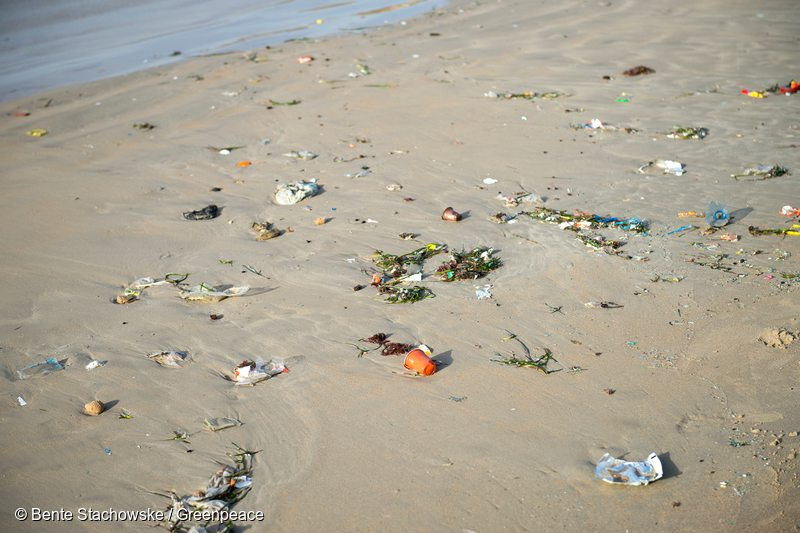climate change plastic pollution The incident highlights just how pervasive plastic pollution is—even the smartest marine animals are falling prey  brownlow wrote that climate change may have also played a role in the animal.