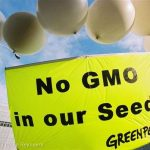 GMO-Free Seeds Action in Brussels