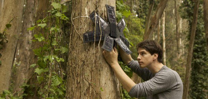 Can Used Cell Phones Really Save the RainForest?