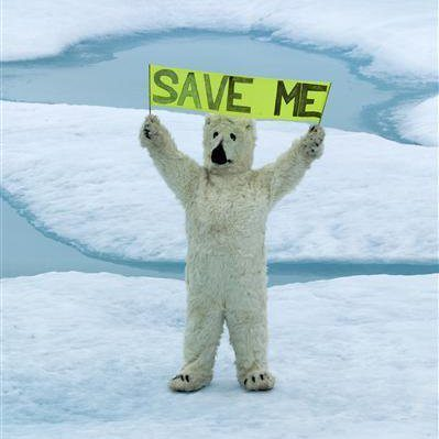 Tellshell To Get Out Of The Arctic