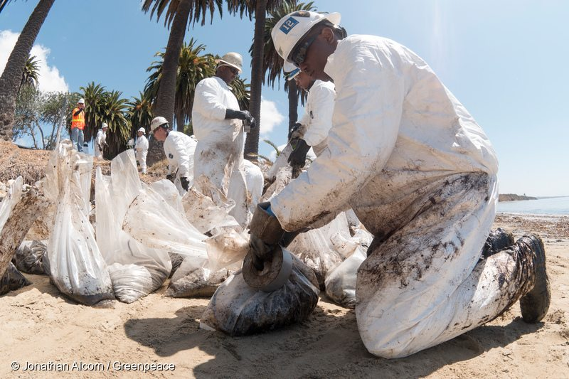 Activists Clean up Californian Oil Spill