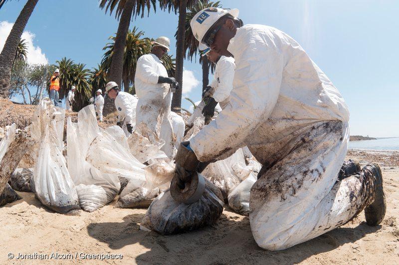 Activists Clean up Californian Oil Spill