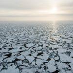 Photo by Daniel Beltra / Greenpeace