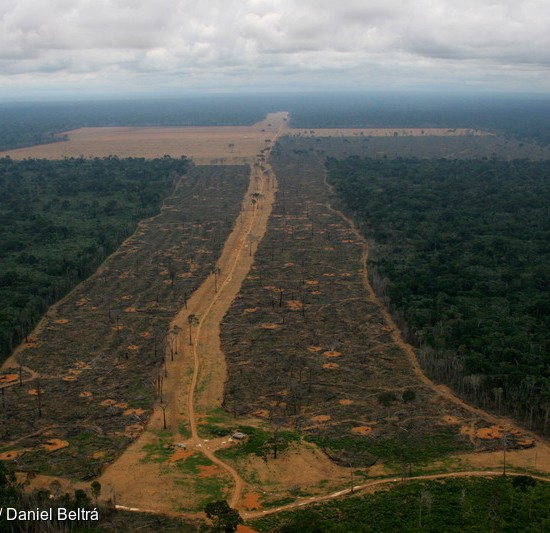 Amazon Deforestation in Brazil