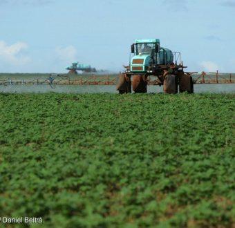 Tractor in Soya Field in Brazil