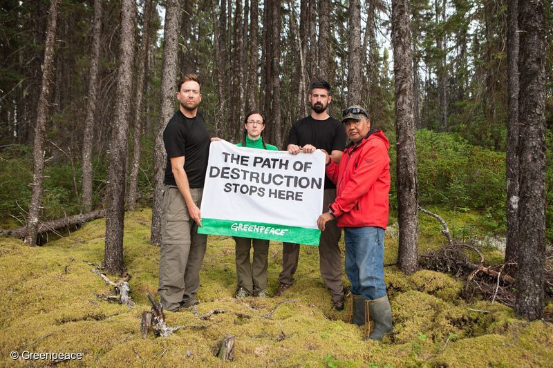 saving the canadian forestry industry