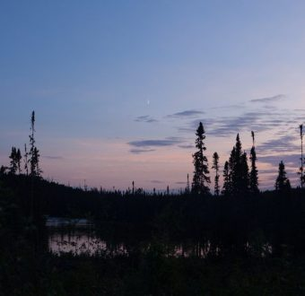 Boreal Forest in Broadback Valley at Dusk