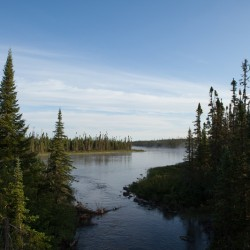 Intact Boreal Forest in Broadback Valley