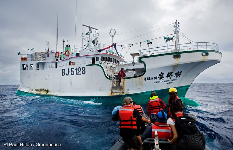 Greenpeace activists prepare to board illegal fishing vessel Shuen De Ching No 888. The Rainbow Warrior travels in the Pacific to expose out of control tuna fisheries. Tuna fishing has been linked to shark finning, overfishing and human rights abuses.