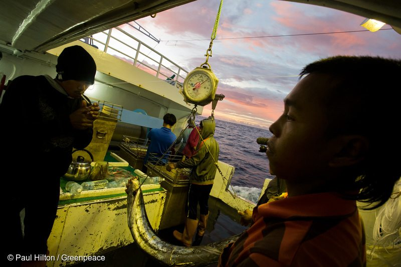 Crew of illegal fishing vessel Shuen De Ching No.888. The Rainbow Warrior travels in the Pacific to expose out of control tuna fisheries. Tuna fishing has been linked to shark finning, overfishing and human rights abuses.