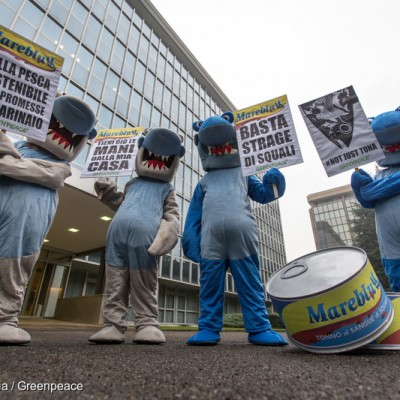 Sharks Protest at Thai Union's Italian Brand Mareblu in Milan