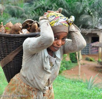 Farmer in Cameroon