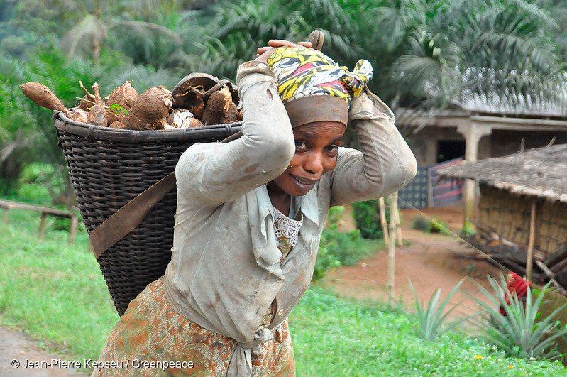 Farmer in Cameroon