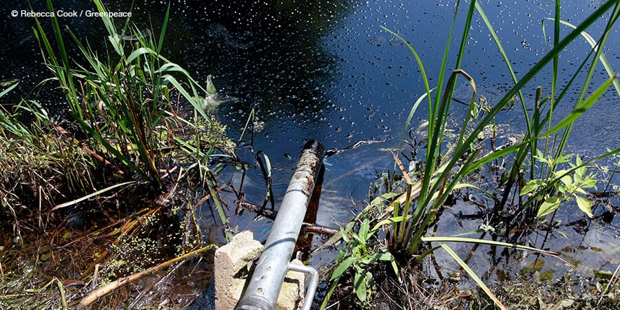 A leaking pipeline spills about 840,000 gallons of oil into a creek