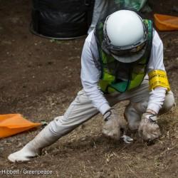 Radioactive Decontamination in Iitate District in Japan