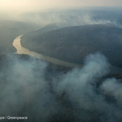 Forest Fires in the Indigenous Land Arariboia in BrazilIncêndio florestal na Terra Indígena Arariboia
