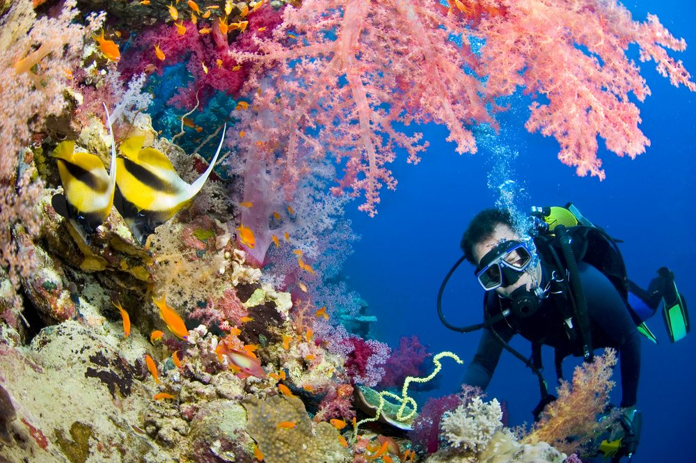 Scuba Underwater