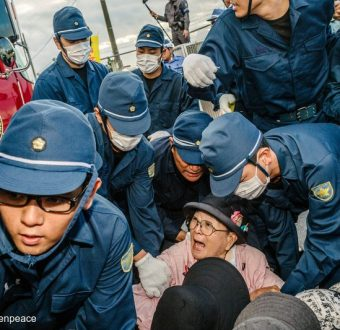 Protestors at the Military Base in Okinawa