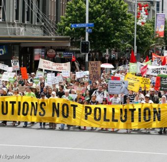 COP21: Climate March in Auckland