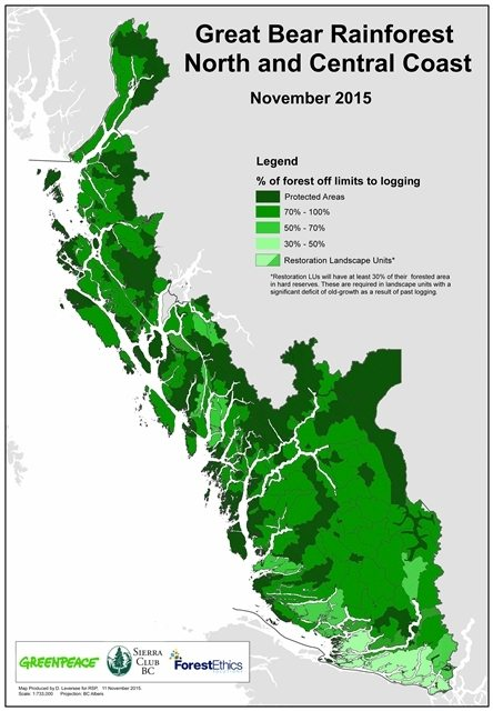 85% of the forests within the Great Bear Rainforest (much of it old-growth), totaling an incredible 3.1 million hectares, will now be off limits to industrial logging. This is equal to an area the size of Vancouver Island! When we started our campaign in the early 1990s less than 5% of the rainforest was protected.