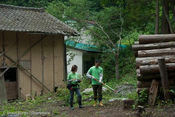 Greenpeace Japan documents the on going radioactive decontamination work in Iitate district, Japan. Despite tests showing the area is still uninhabitable, the Abe government is forcing people to return.