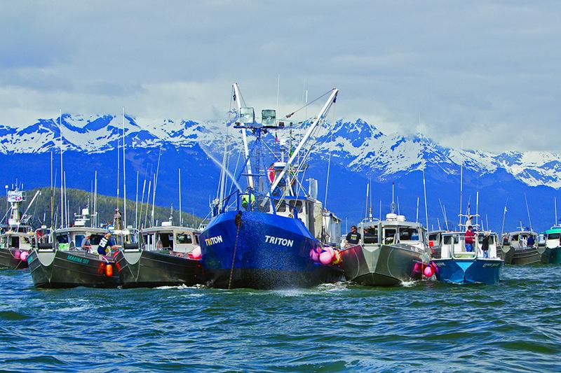 Gulf of Alaska Protest