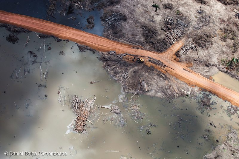 This aerial image exposes the massive construction and considerable environmental destruction.