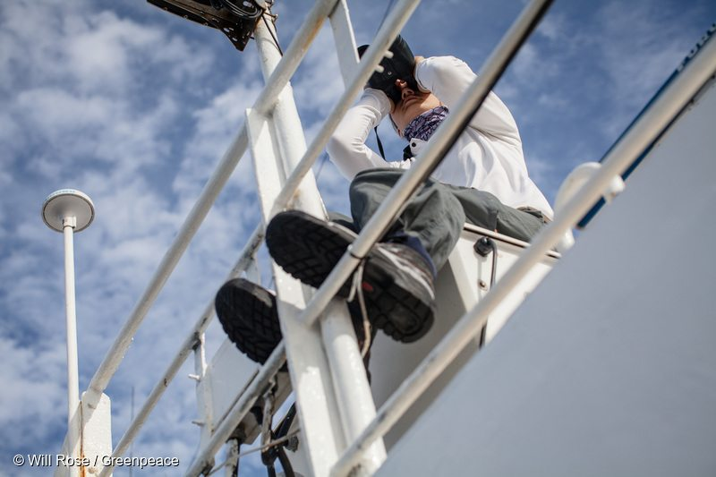 Greenpeace campaigner searches for FADs on the ship's monkey nest.