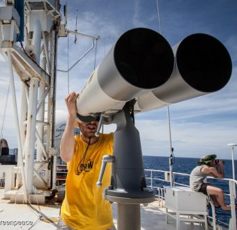 Greenpeace campaigner searches for FADs (Fish Aggregation Devices) on the ship's monkey nest.