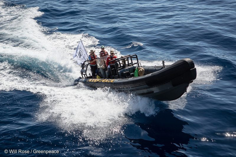 Greenpeace rhibs are deployed to investigate a possible FAD (fish aggregating device) sighting. Greenpeace is in the Indian Ocean to document and peacefully oppose destructive fishing practices.