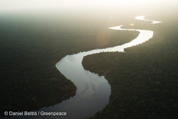 River in the Amazon