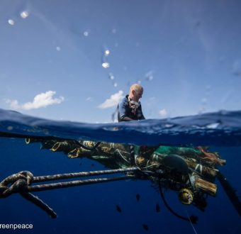A Greenpeace diver sits upon a recovered FAD (fish aggregating device) making preparations to remove the device from the water. Greenpeace is in the Indian Ocean to document and peacefully oppose destructive fishing practices.