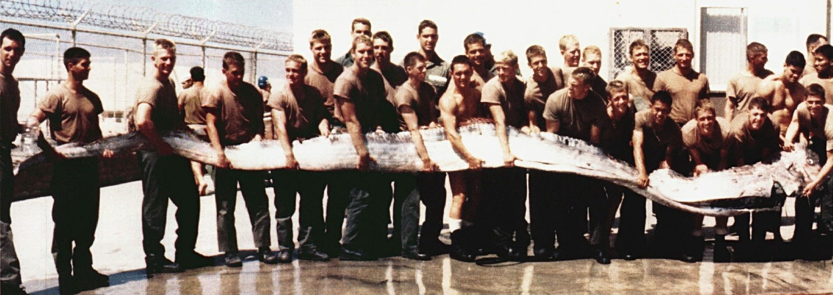 Giant oarfish found on the shore of the Pacific Ocean near San Diego, California. Credit: US Navy
