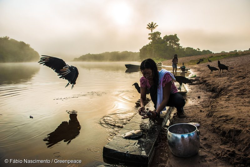Munduruku on Cururu River in BrazilMunduruku no Rio Cururu