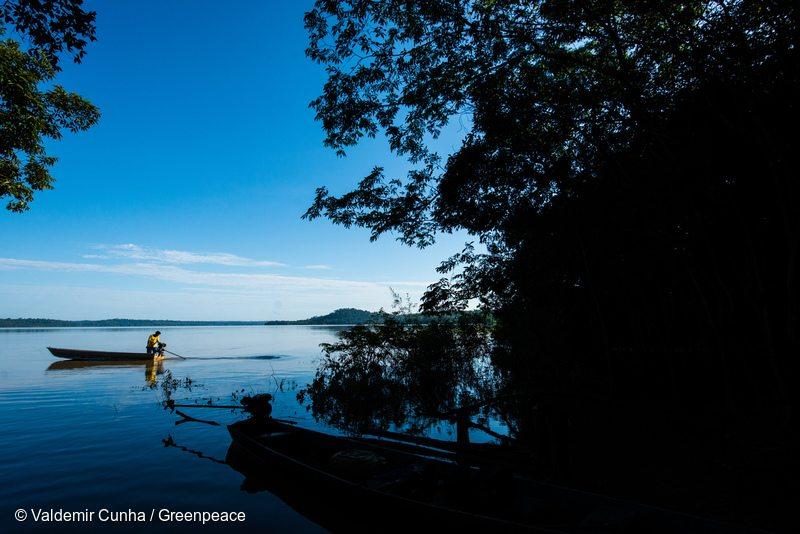 Munduruku in the Tapajós river, next to Sawré Muybu Indigenous Land, home to the Munduruku people, Pará state, Brazil. Brazilian Government plans to build 43 dams in the Tapajós river basin. The largest planned dam, São Luiz do Tapajós, will impact the life of indigenous peoples and riverside communities. Mega-dams like these threaten the fragile biome of the Amazon, where rivers are fundamental to regeneration and distribution of plant species and the survival of local flora. Renewable energy, such as solar and wind, holds the key to Brazil's energy future. Mundurku no Rio Tapajós, na região da Terra Indígena Sawré Muybu, do povo Munduruku, no Pará. O governo brasileiro planeja construir 43 hidrelétricas na bacia do Tapajós. A maior delas, São Luiz do Tapajós, terá impacto sobre a vida dos povos indígenas e comunidades ribeirinhas. Barragens como essas ameaçam o frágil bioma da Amazônia, onde os rios são fundamentais para a regeneração e distribuição de espécies vegetais e a sobrevivência da flora local. Energias renováveis, como solar e eólica, detêm a chave para o futuro energético do Brasil. Itaituba, Pará. 22/02/2016. Foto: Valdemir Cunha/Greenpeace