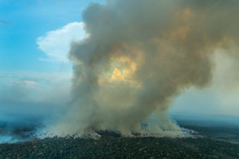 Forest Fire in the AmazonQueimada na Amazônia