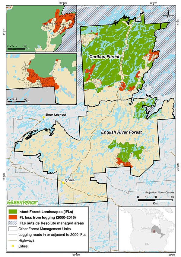 Map showing intact forest landscape loss in Ontario