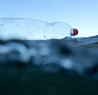 Plastic Bottle in the North Sea