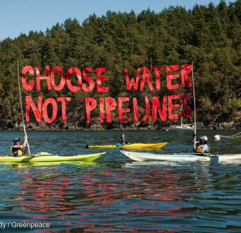 Oil-free Salish Sea Action Camp Training in Washington