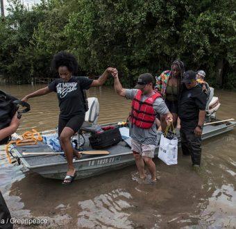 Hurricane Harvey Flooding Rescues near Katy, Texas