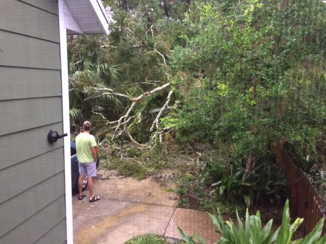 Irma Impacts in Gainesville, Florida