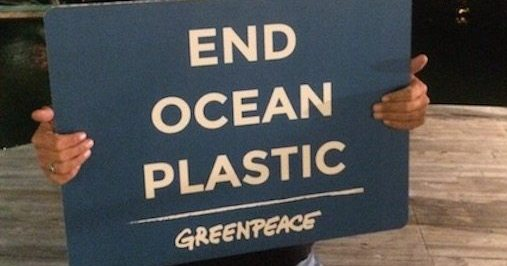 Joe For Oil >> How Plastic is Harming Florida's Marine Life, and What We Can Do About It