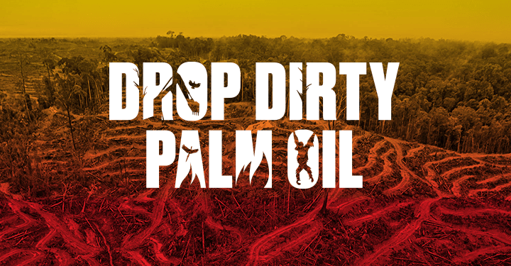 drop-dirty-palm-oil-light-box