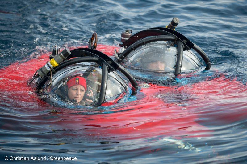 https://www.greenpeace.org/usa/wp-content/uploads/2018/01/Dr.-Susanne-Lockhart-Antarctic-biologist.jpg