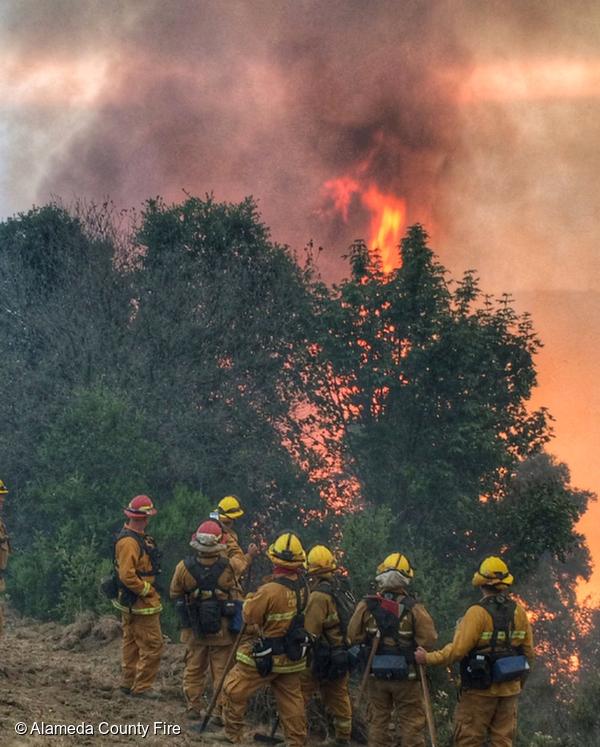 2016 Soberanes Fire in Alameda, California, © Alameda County Fire